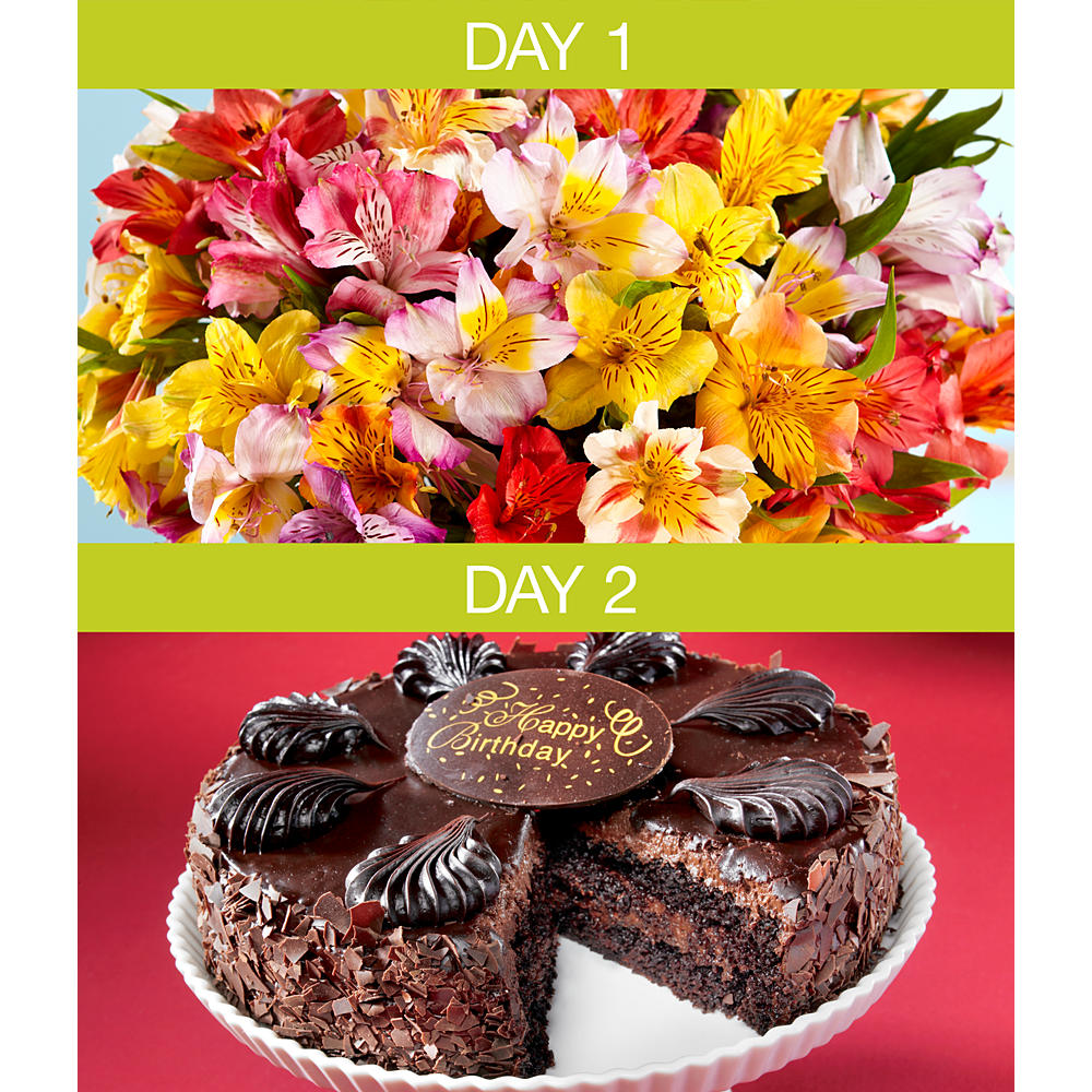 ProFlowers - Flowers - Two Day Birthday Celebration with Free Vase
