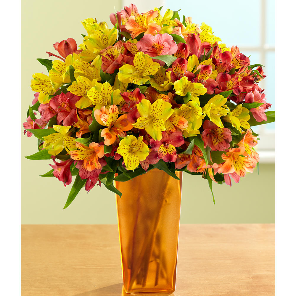 ProFlowers - 100 Blooms of Autumn Peruvian Lilies
