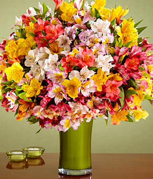200 Blooms of Peruvian Lilies with Chocolates