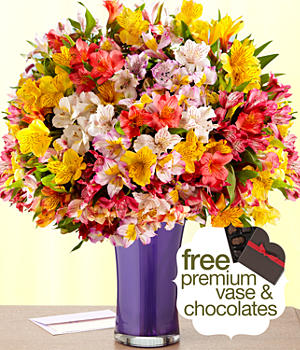 200 Blooms for Mom with Free Purple Trumpet Vase & Chocolates