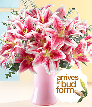 Deluxe Fragrant Stargazer Lilies for Mom