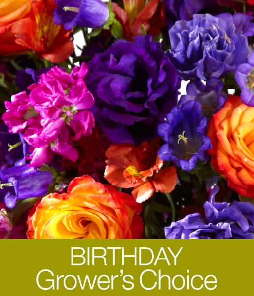 ProFlowers - Birthday Grower's Choice with FREE Vase, Chocolates & Bear