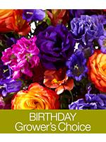 Birthday Grower's Choice with FREE Vase & Chocolates