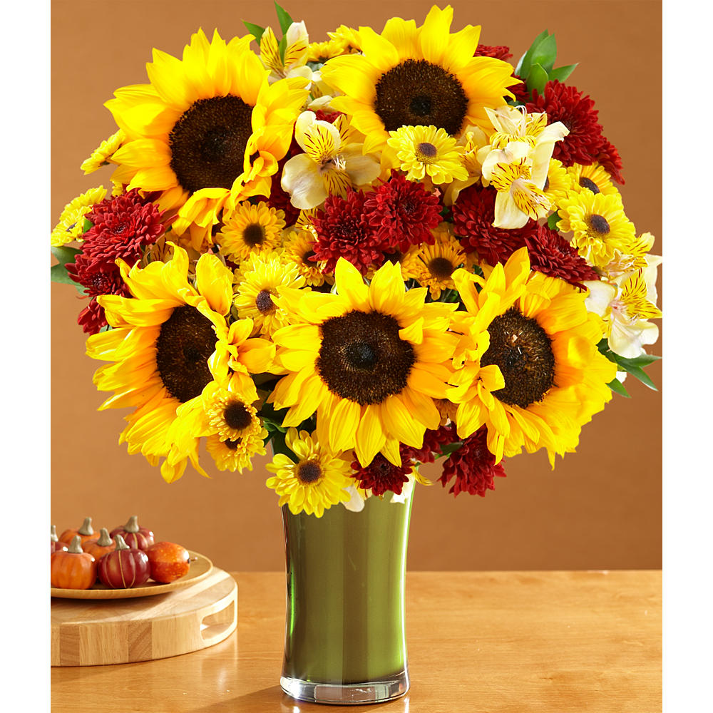 ProFlowers - Deluxe Fall Sunflowers