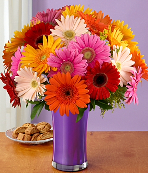 ProFlowers - Deluxe Colorful Gerbera Daisies