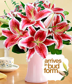 Fragrant Stargazer Lilies for Mom