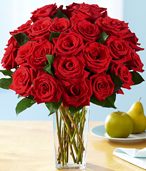 One Dozen Red Roses + 12 FREE