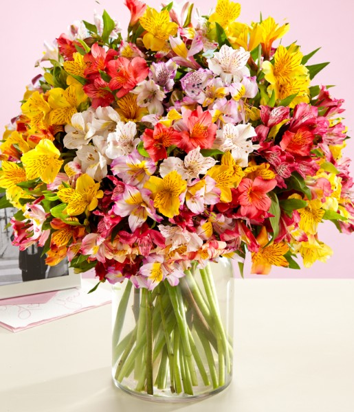 ProFlowers - 200 Blooms of Peruvian Lilies