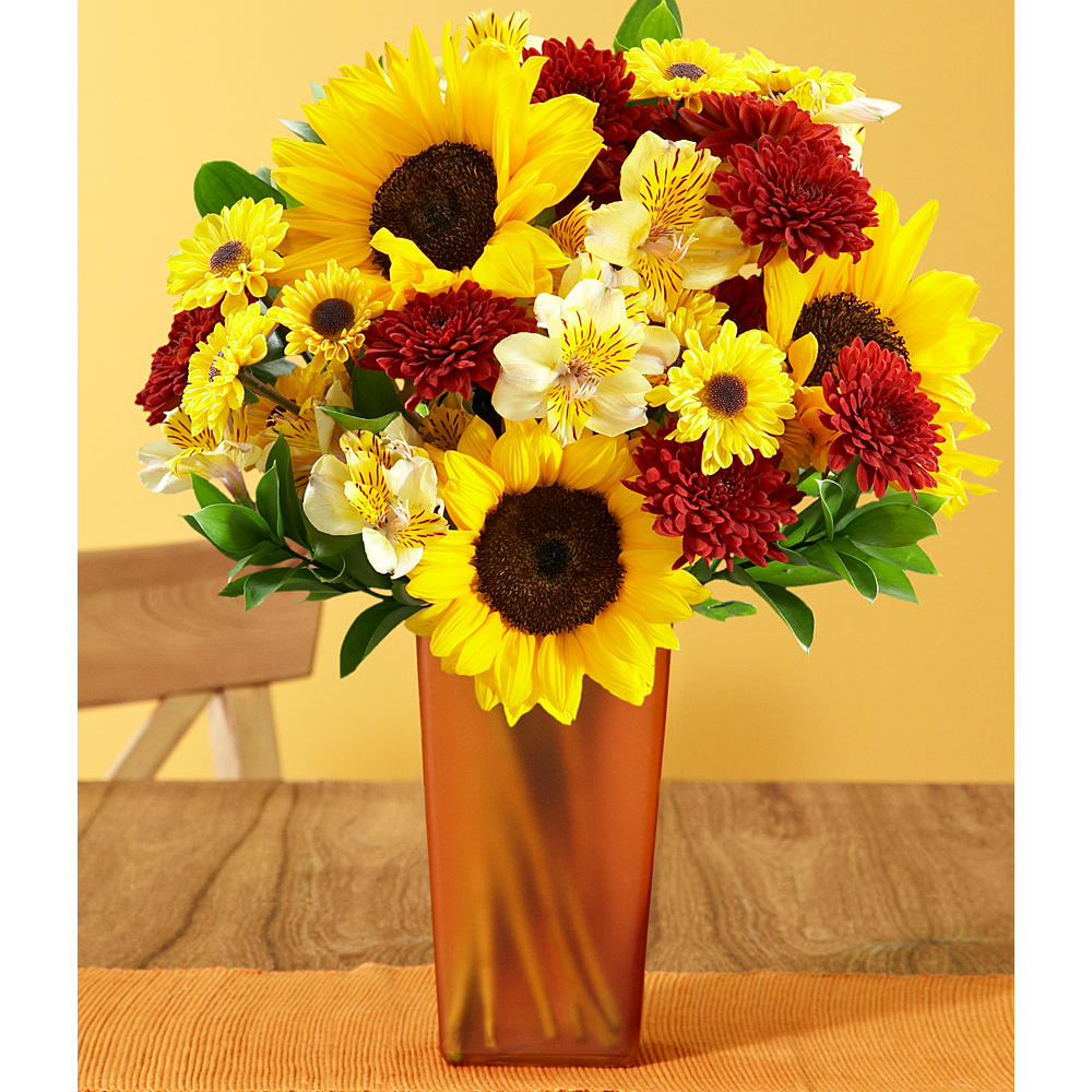 ProFlowers - Fall Sunflowers