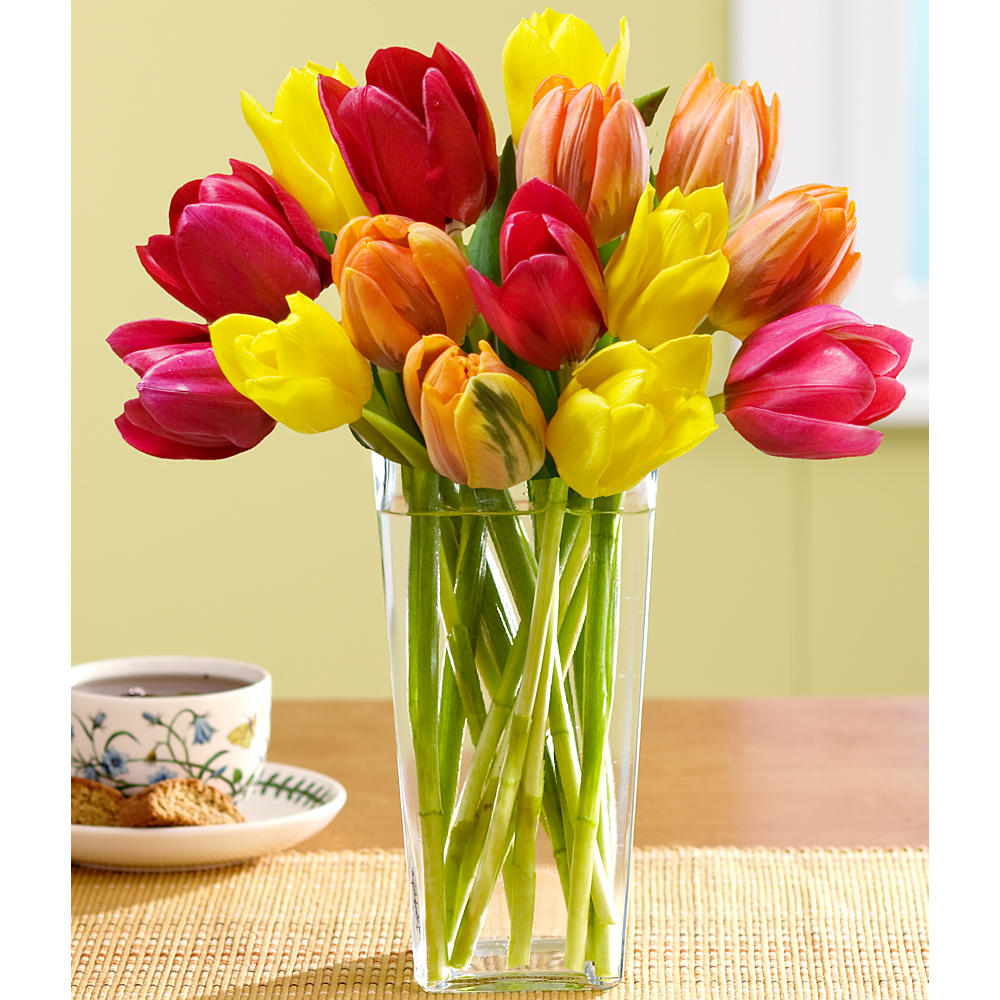 15 Autumn Tulips