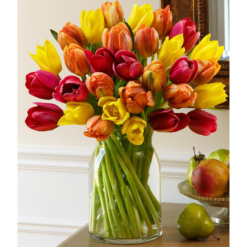 ProFlowers - 30 Autumn Tulips