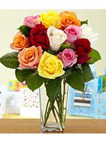 One Dozen Vibrant Birthday Roses