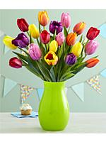 20 Multi-Colored Birthday Tulips