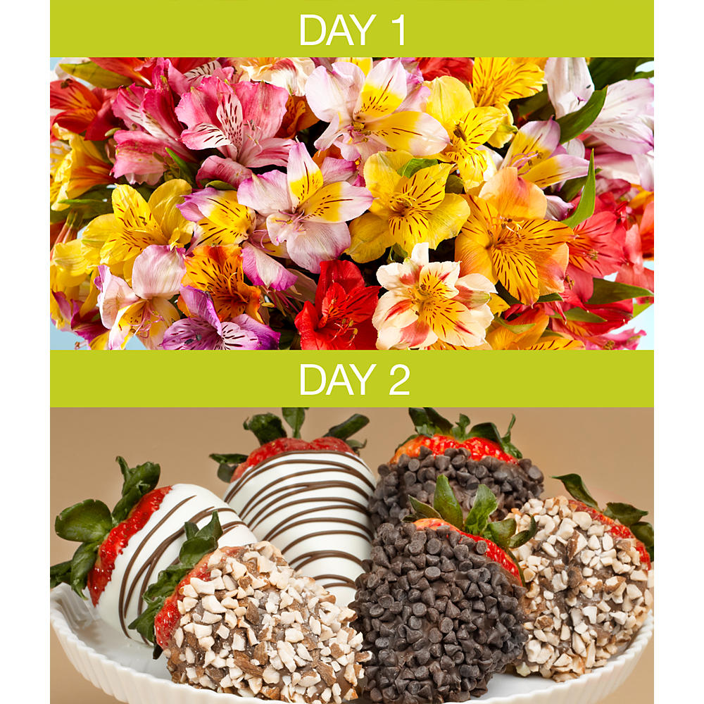 ProFlowers - 100 Blooms of Peruvian Lilies with 6 Gourmet Dipped Strawberries