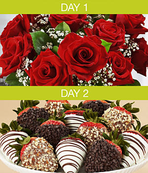 One Dozen Red Roses with 12 Hand-Dipped Strawberries with Free Vase