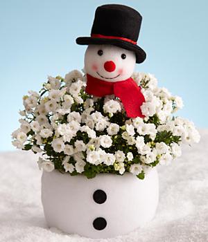 Happy Jolly Snowman
