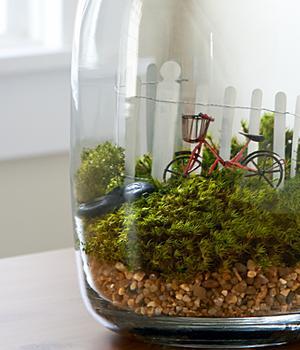 terrarium supplies to make your own terrarium