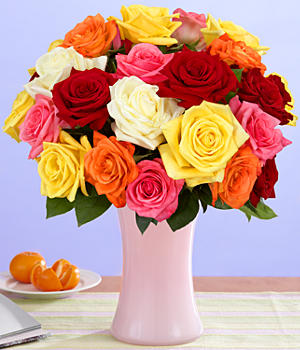 One Dozen Rainbow Roses + 12 Free