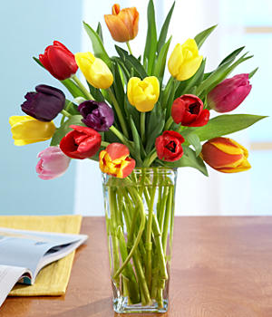 Assorted Tulips with Vase