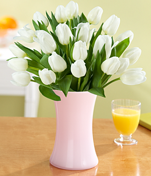 Flowers – 20 White Tulips with Vase