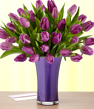 Flowers – 30 Purple Tulips with Vase