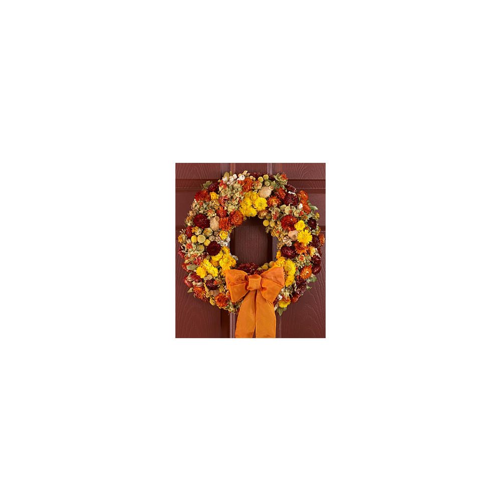 "18"" Radiant Fall Wreath -Preserved"